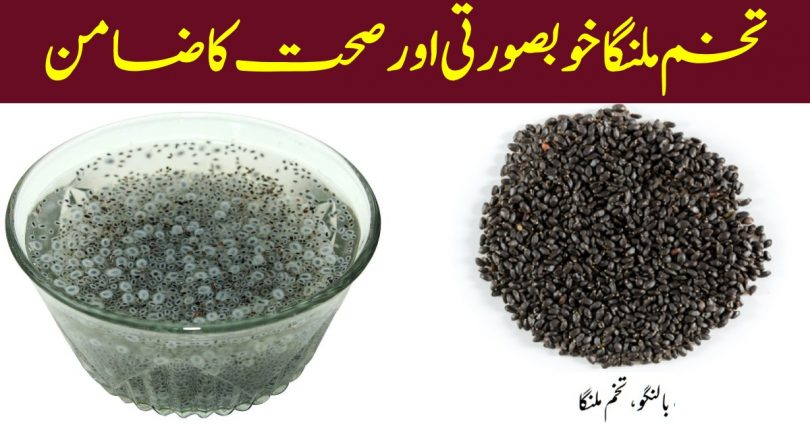 Top Five Health Benefits Of Chia Seed Ilmcards