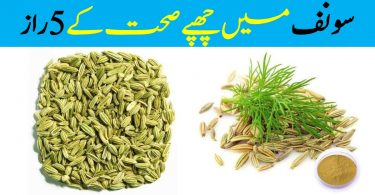 Top Five Health Based Benefits of Fennel
